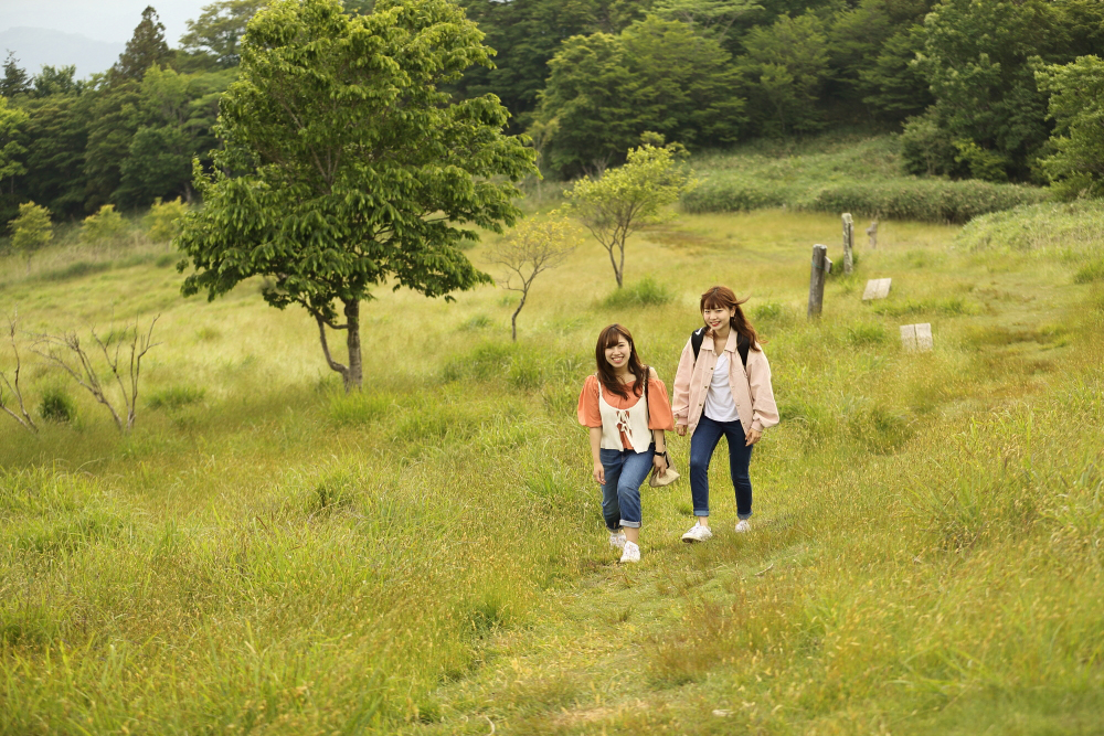 茶臼山高原トレッキング